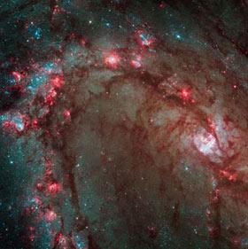 Hubble closeup of M83 spiral arm, where stars are being born.