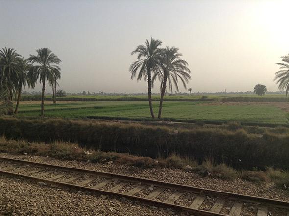 Egyptian landscape.