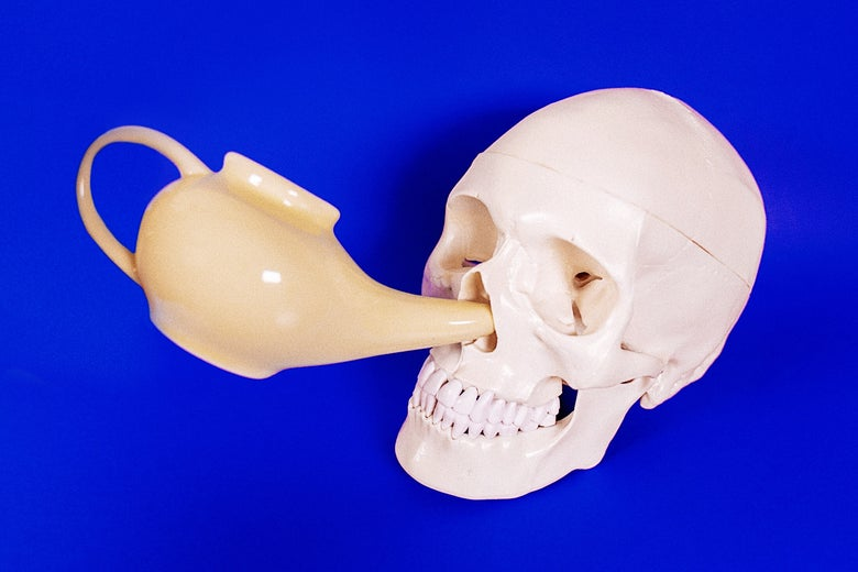 Neti pot irrigating the nasal passages of a human skull on a blue background.