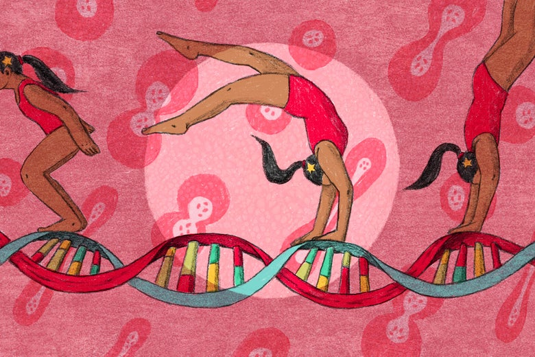 A gymnast doing a routine on a strand of DNA.
