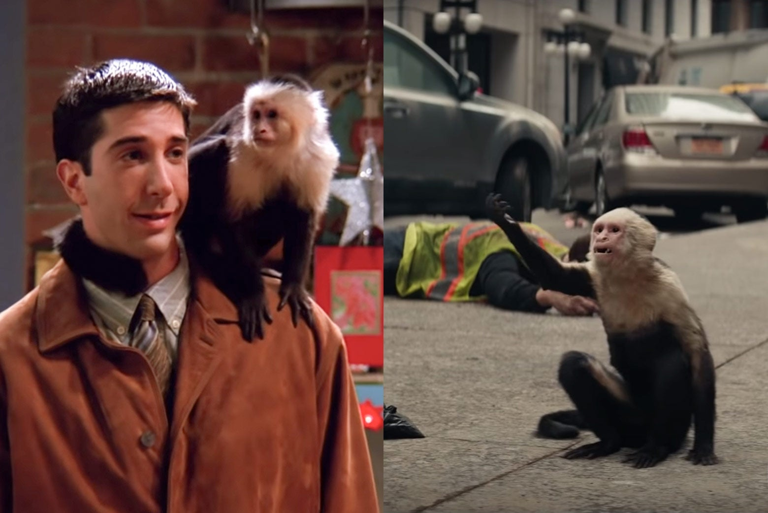 On the left, Ross (David Schwimmer) with Marcel on his shoulder. On the right, Ampersand in Y: The Last Man.