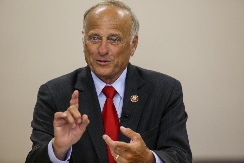 Steve King speaks at a town hall event.
