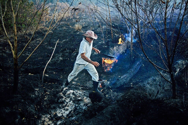 A farmer is seen at a burned area of the Amazon rainforest.