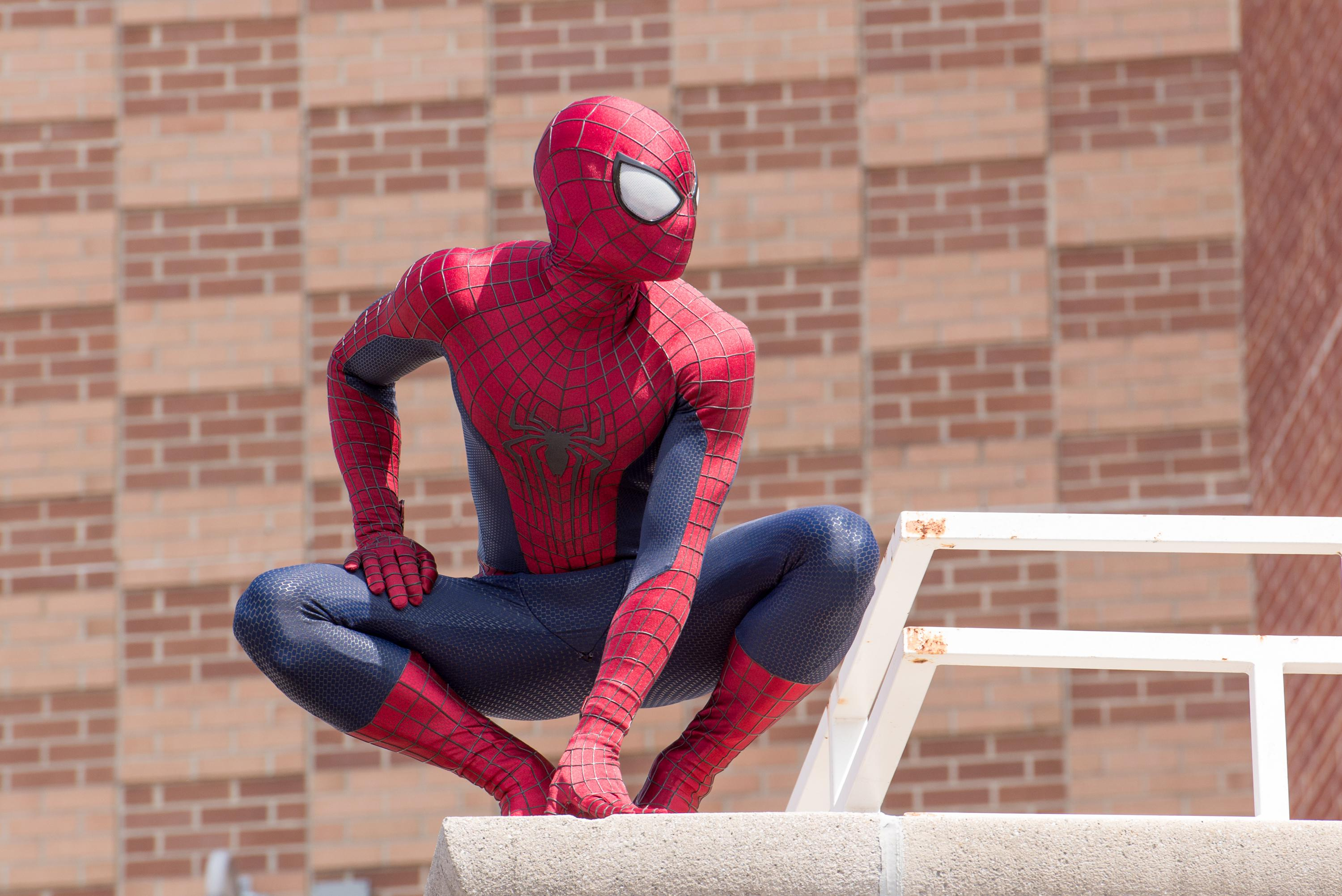 Spider-Man crouched atop a building.