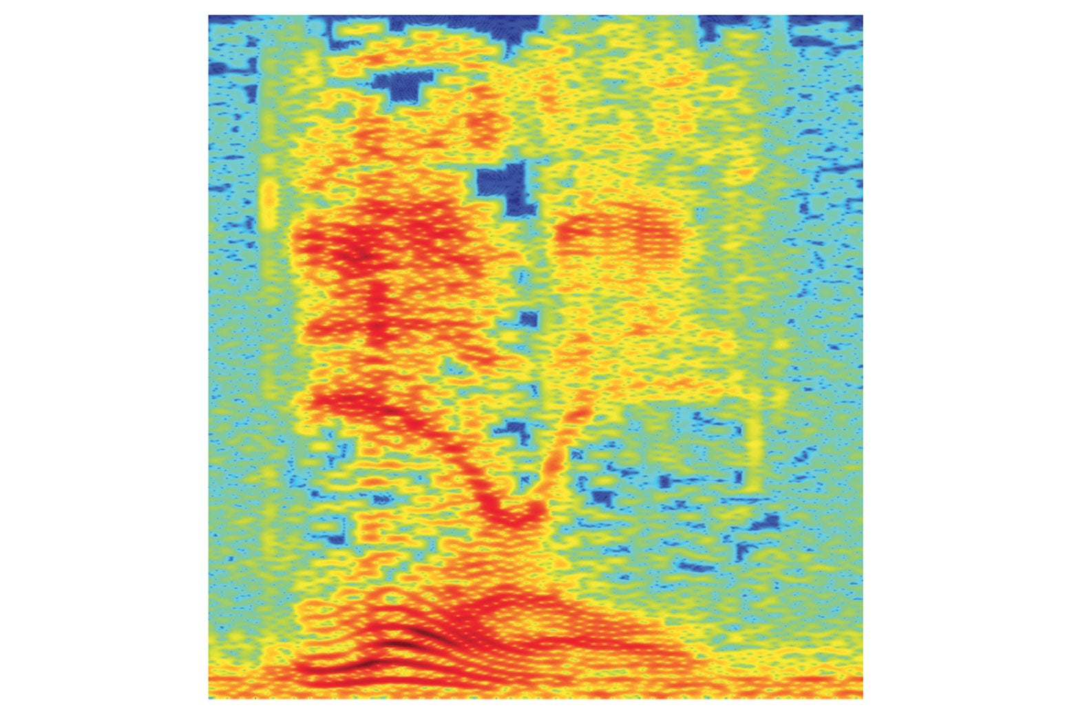A spectrogram of the audio.