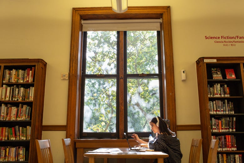 A young woman uses her laptop at a table by the window, sunlight streaming in.