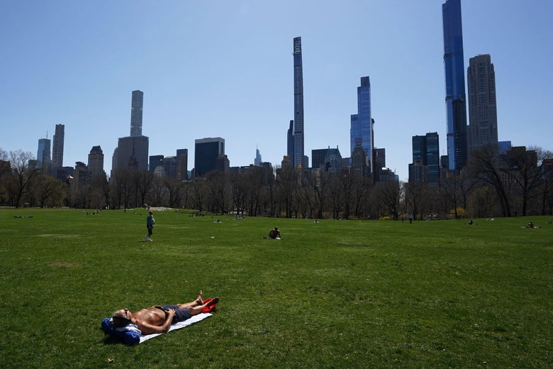 A shirtless man lays alone, far away from anyone else, on the grass in the meadow of Central Park.