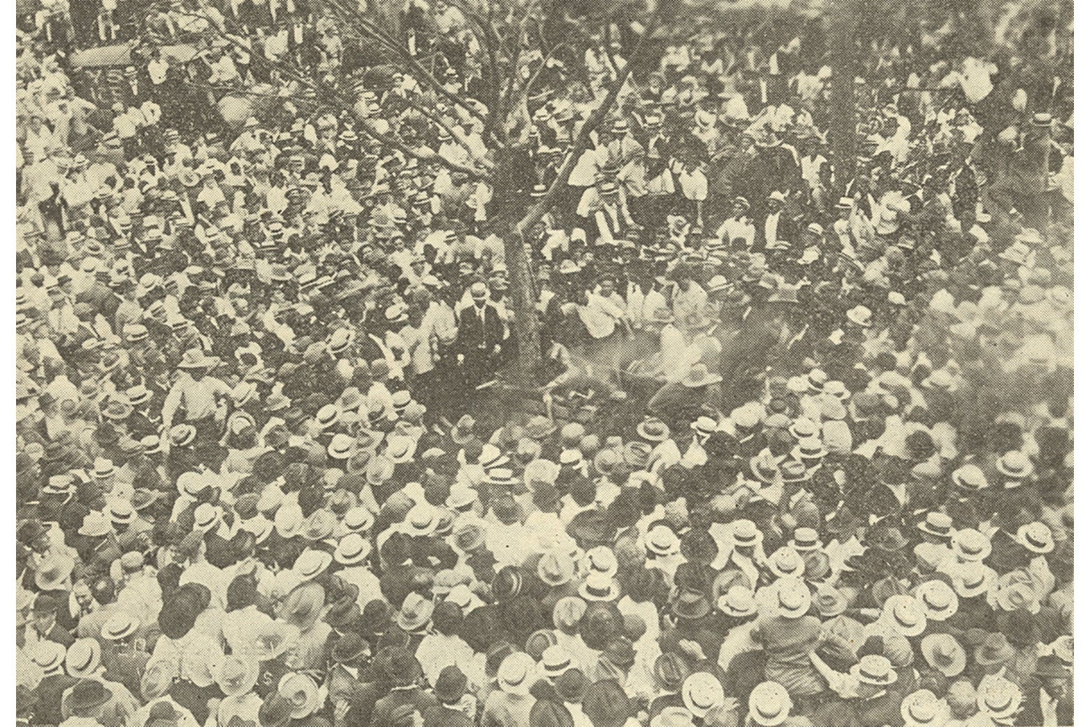 A shot from a high angle of a well-dressed crowd, many wearing straw hats, surrounding Jesse Washington's lynching.
