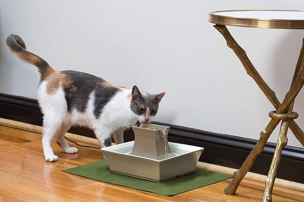 PetSafe Drinkwell Pagoda Dog and Cat Water Fountain