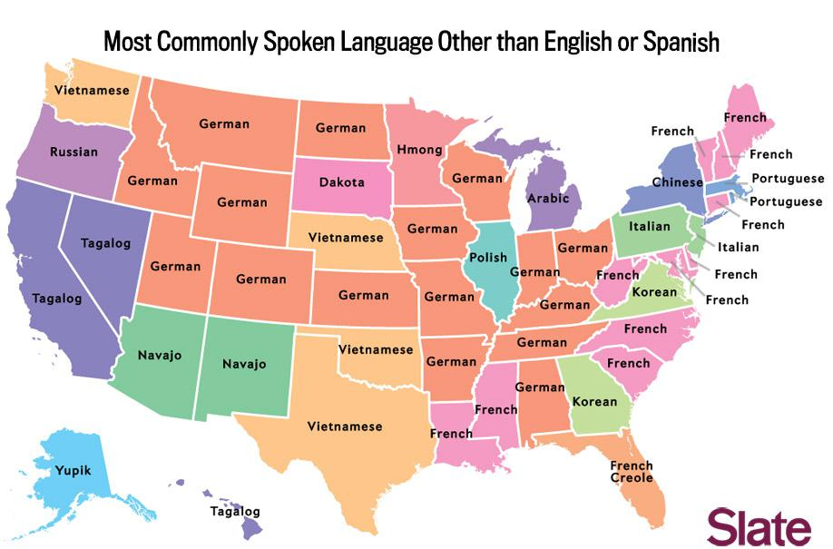 Major Linguistic Groups Native American Map.Language Map What S The Most Popular Language In Your State