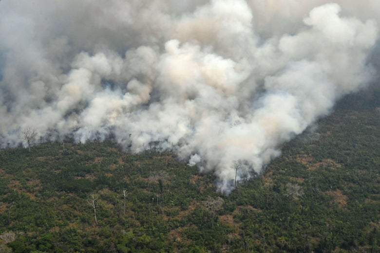 Aerial picture showing smoke from a two-kilometre-long stretch of fire billowing from the Amazon rainforest about 65 km from Porto Velho, in the state of Rondonia, in northern Brazil, on August 23, 2019.