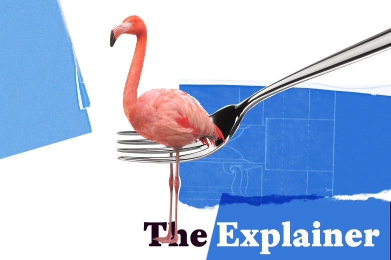 A flamingo caught in a fork, looking supposedly delectable