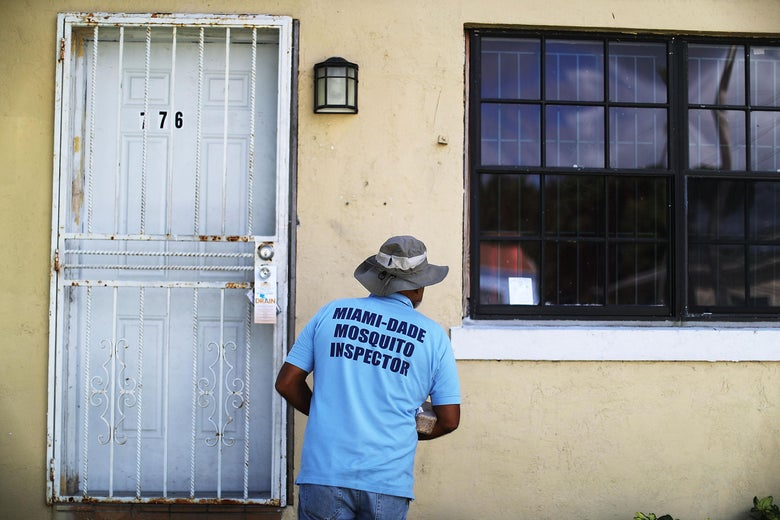 "A man wearing a shirt that says ""Miami-Dade Mosquito Inspector"" peers at a house."