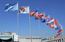 United Nations flags. Click image to expand.