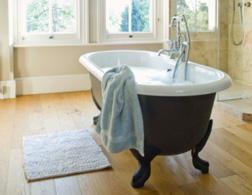 A bathtub. Click image to expand.