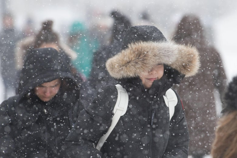 People bundled up for the cold walk on the sidewalk during snowy weather.