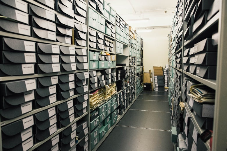 Shelves containing boxes of files