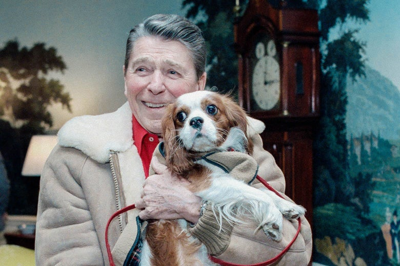 Ronald Reagan, grinning, in a tan jacket, holds an alarmed looking dog.