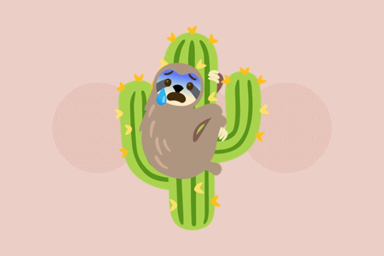 An emoji of a crying sloth clinging to a cactus.