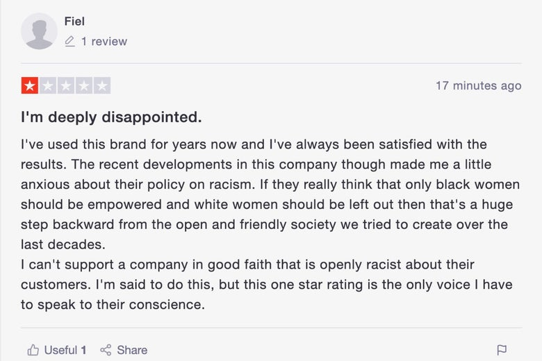 A screenshot of a malicious comment left on the Trustpilot page for the Honey Pot.