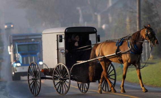Amish children arrive via horse and buggy to their newly built schoolhouse.