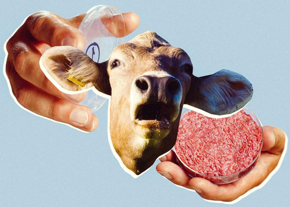 Why is fetal cow blood used to grow fake meat?