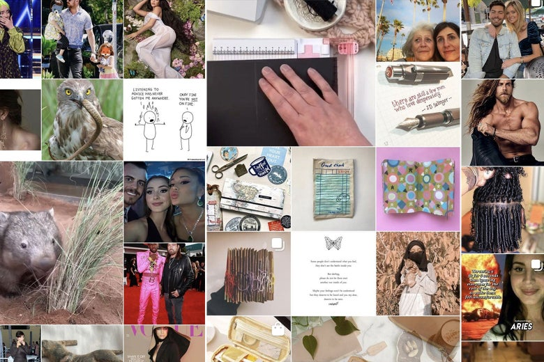 A collage of various pictures from an Instagram Explore feed, including photos of animals, celebrities, pens, and paper crafts.