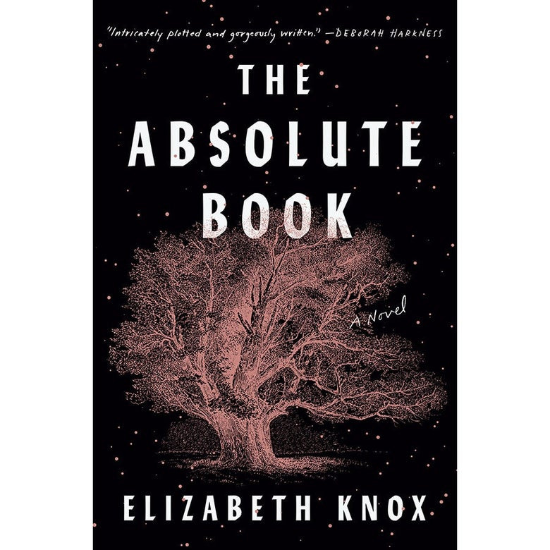The cover of The Absolute Book