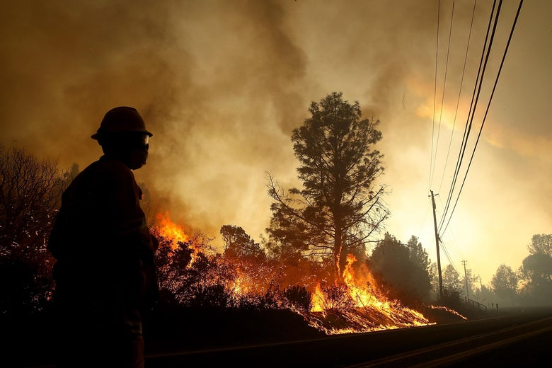 A firefighter stands on a highway as the fire burns by the roadside.