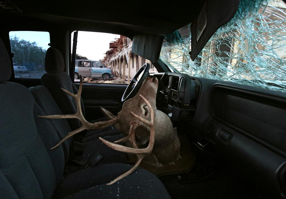 A deer head mount sits inside a damaged car parked next to the apartment complex that was severely damaged by yesterday's explosion at the fertilizer plant on April 18, 2013 in West, Texas.