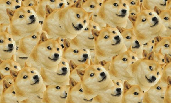Doge Why We Can T Agree On How To Pronounce The Internet