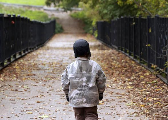 Little boy walking in autumn park.