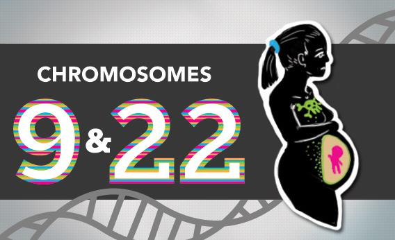 Blogging the Human Genome Entry 12