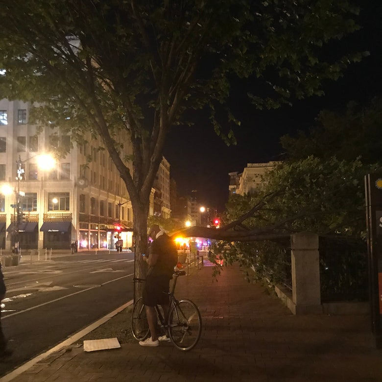 A man stands beside his bike in front of a tree in downtown D.C. A snapped limb dangles from the tree.