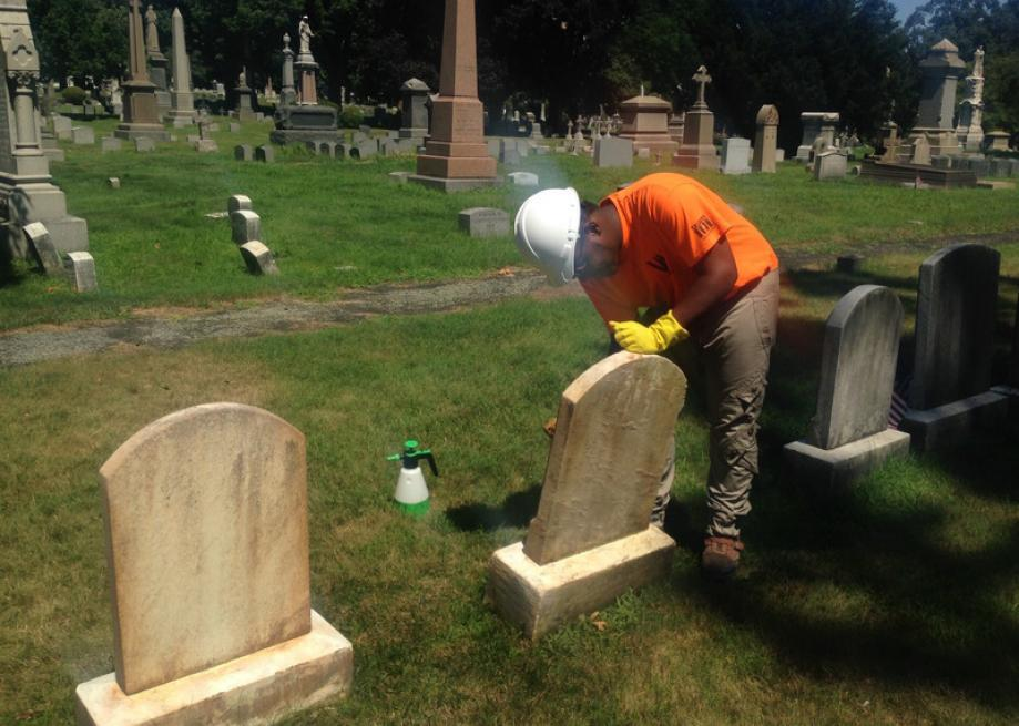 The New York Interns Spending Their Summer in a Cemetery