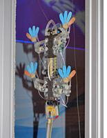 The StickyBot uses adhesive toe pads and a tail to climb glass like a lizard. Click image to expand.