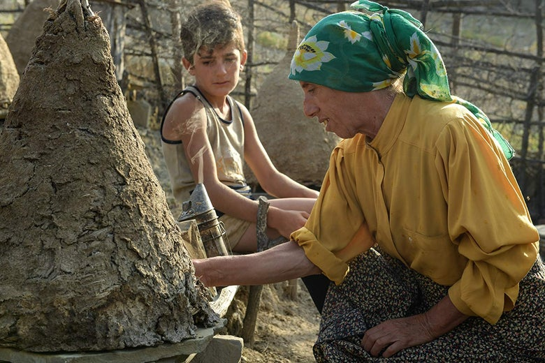 A woman wearing a yellow shirt and a bandana in her hair touches a beehive while a young boy looks on.