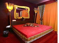 "The ""Safari"" room at Berlin's Artemis brothel. Click image to expand."