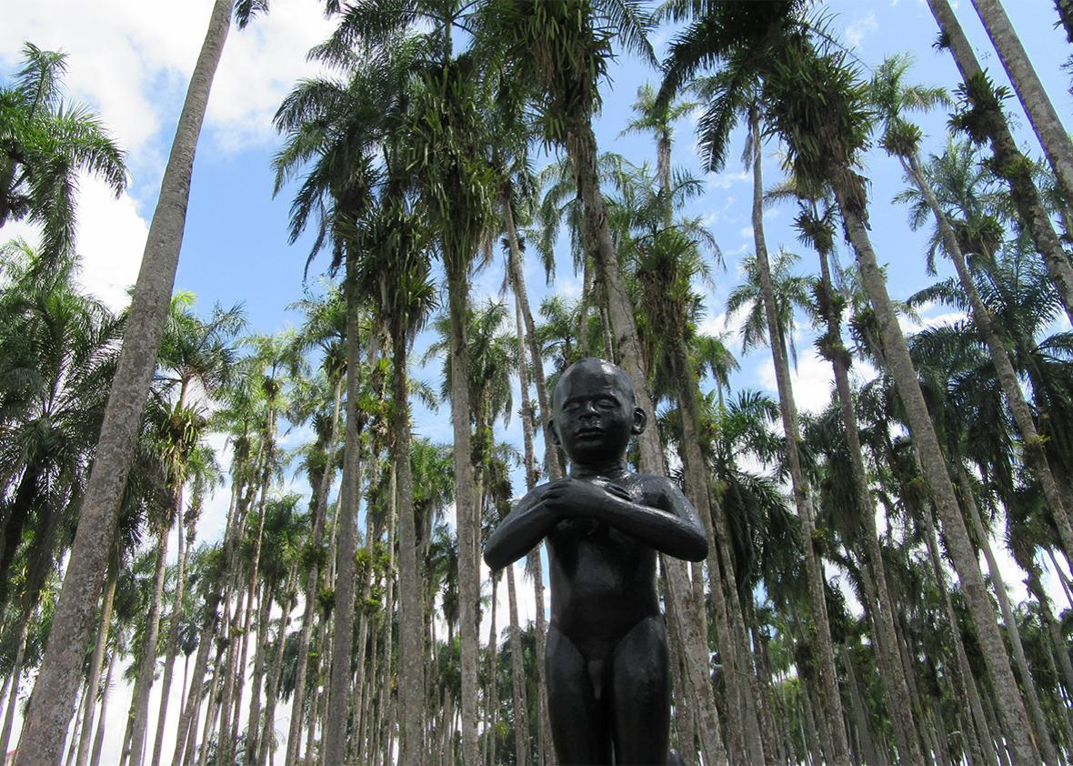 Paramaribo's Palmentuin Park.