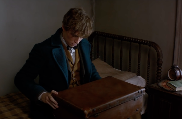 Eddie Redmayne in Fantastic Beasts and Where to Find Them.