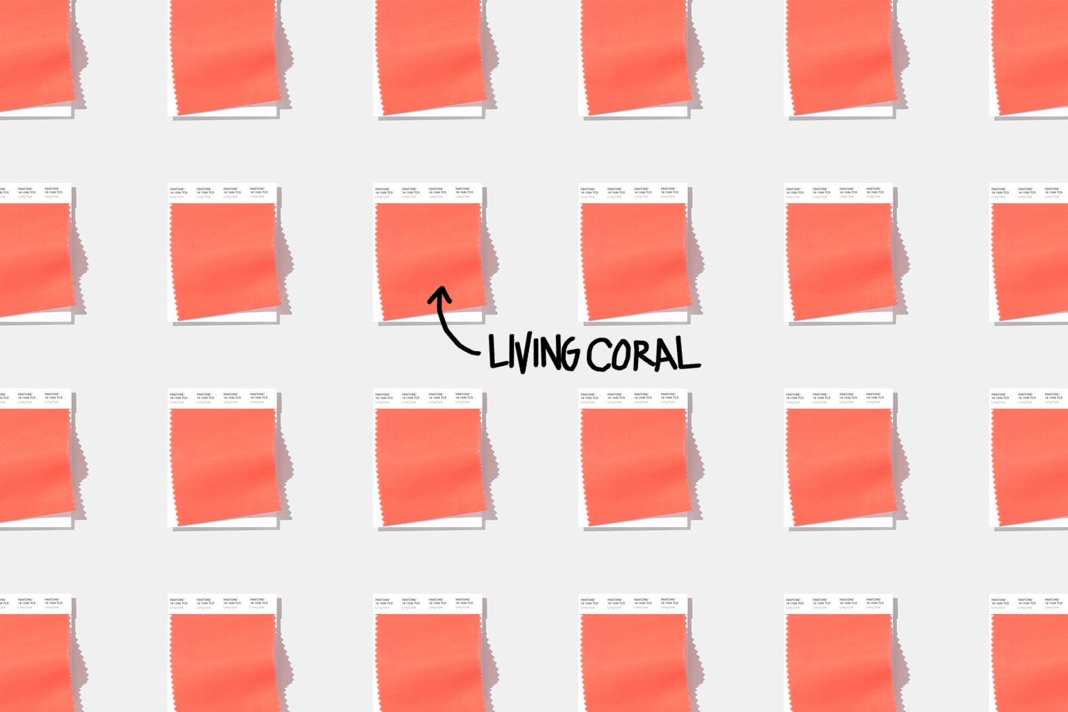 Swatches of Living Coral.