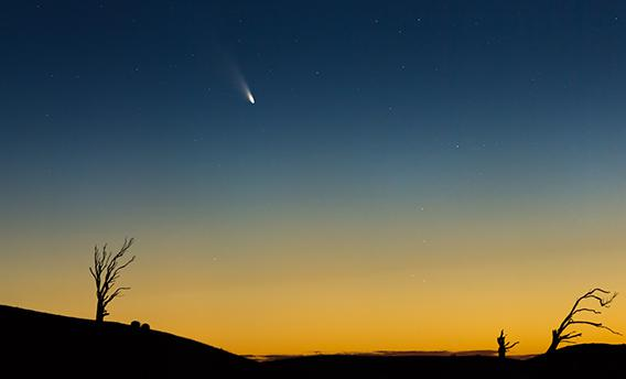 Comet Pan-STARRS, photographed by Phil Hart