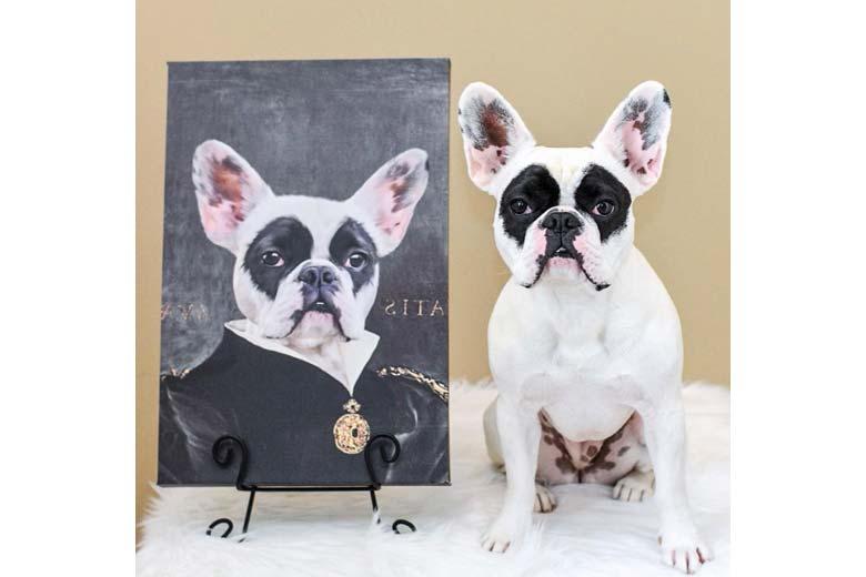 Crown & Paw pet portrait