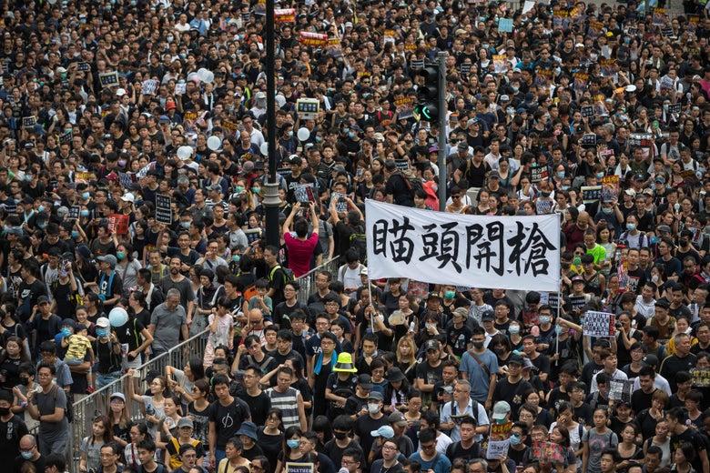 A sea of protesters.