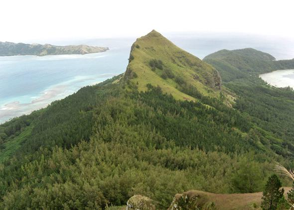 The second highest point on the island of Mangareva, Mt. Mokoto. Almost all the vegetation in this photo is not native to the island, representing the dramatic transformation wrought by humans.