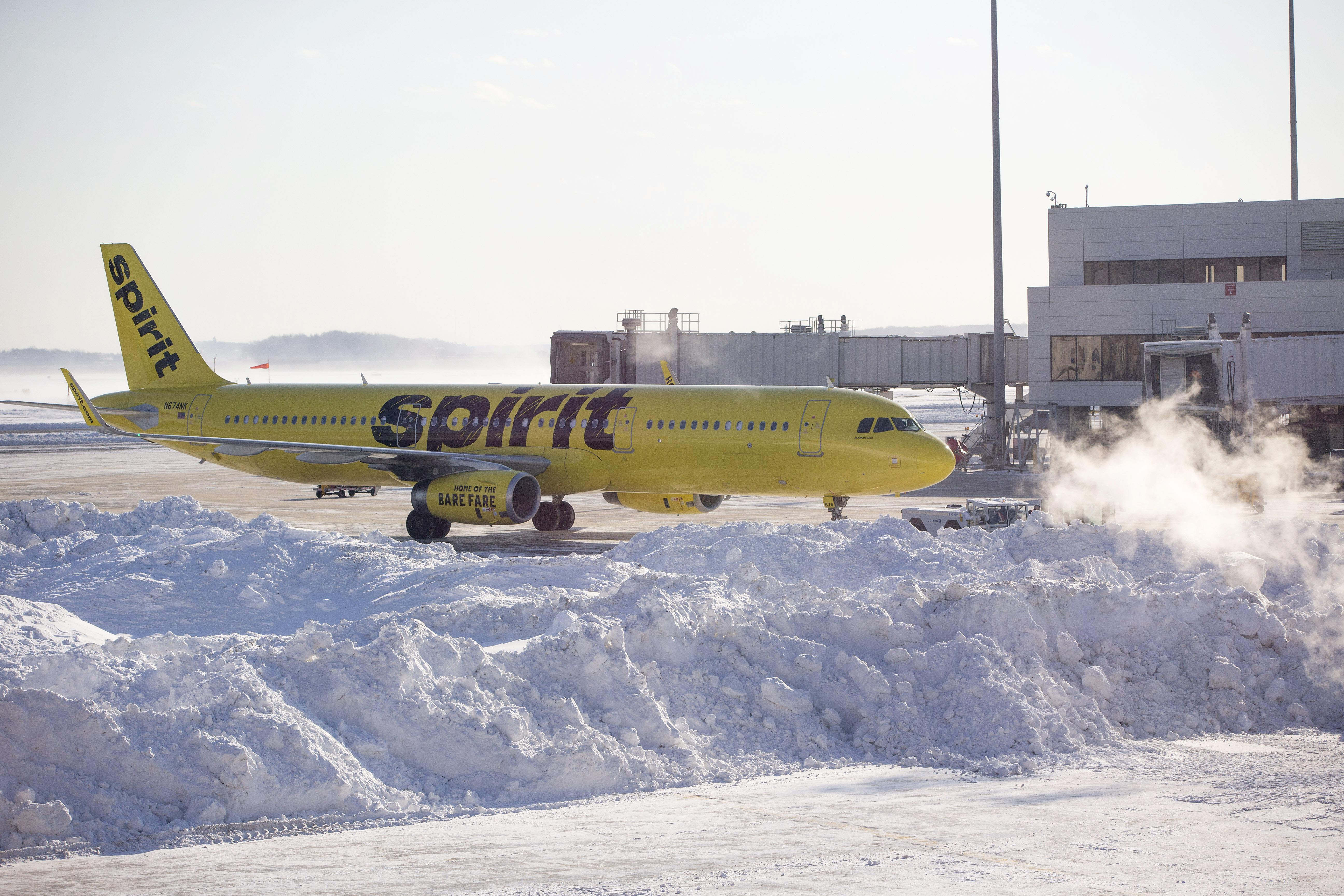 Spirit Airlines acknowledges that it misinformed the passenger, but denies telling her to harm the hamster.