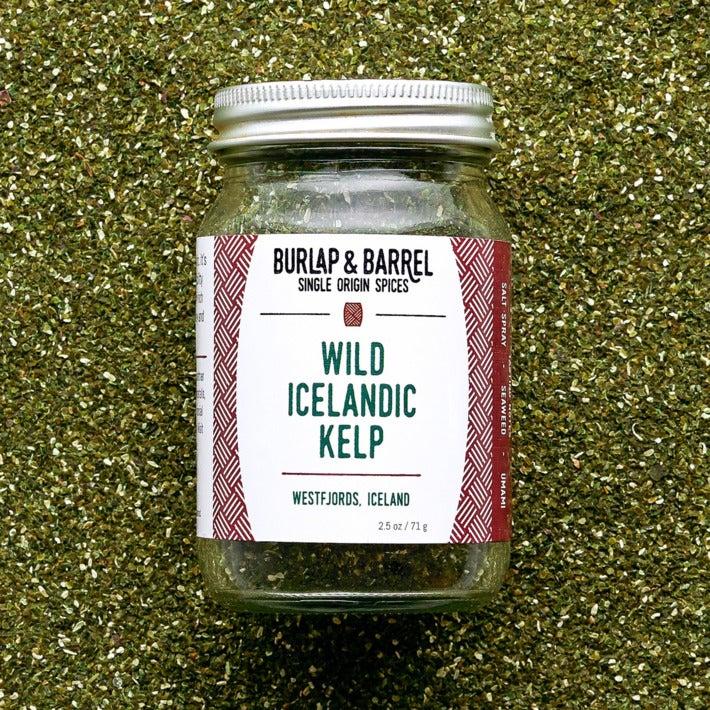 Wild Icelandic Kelp