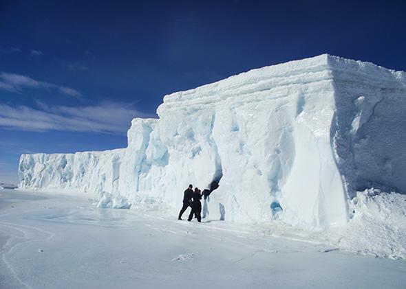 Jynne Martin Antarctica