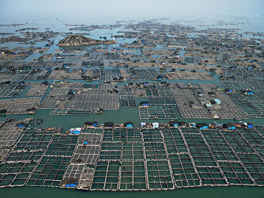 Marine Aquaculture #1, Luoyuan Bay, Fujian Province, China 2012