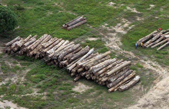 Amazon Deforestation in Brazil Rose 28 Percent in One Year